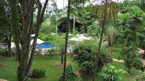 Koh Samui Paradise Beach Resort- Pool (4)