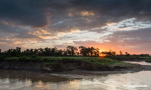 Kenia - Masai Mara 60