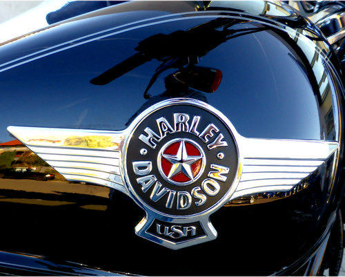 Harley Davidson USA - Fat Boy