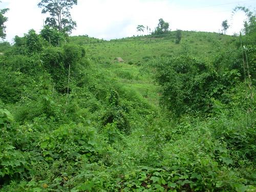 Luang Namtha-Luang Prabang-route (21)