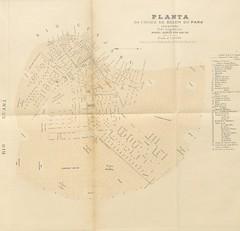 """British Library digitised image from page 147 of """"L'État de Pará, États-Unis du Brésil, etc. (Album des principales avenues, places, monuments, ports, statues de l'État de Pará.)"""""""