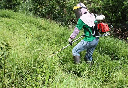 走在崎嶇的山路就是件累人的事,更不用說背著十公斤重的刈草機