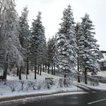 12265719816 0479ca5579 q Erster Winterausflug nach Schellerhau