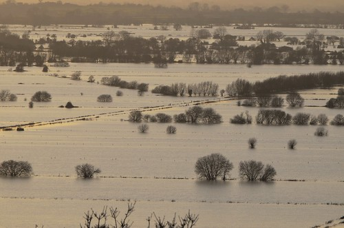 The Somerset Levels by nicksarebi