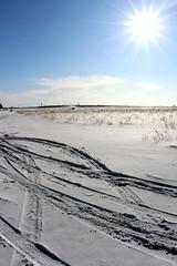 Saskatoon - Feb 2014