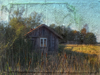 Abandoned shed in a field