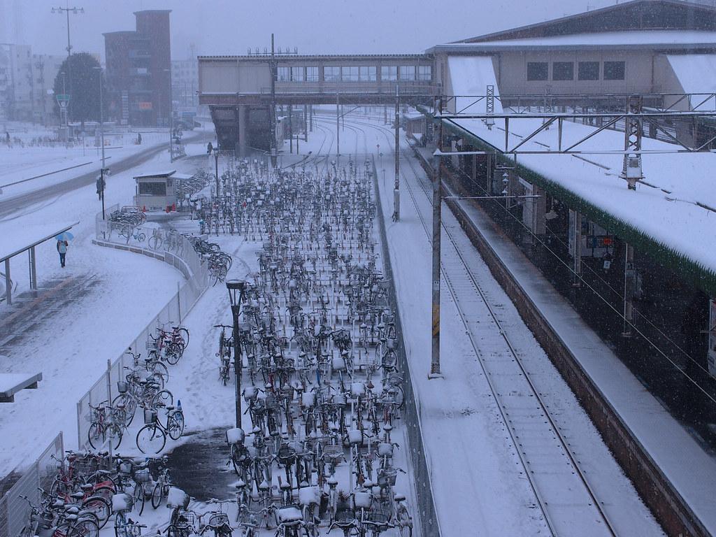 snowy day, 雪の日