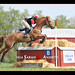 Congratulations to Jersey Fresh CCI 3* winners Buck Davidson and Copper Beech! by Rock and Racehorses