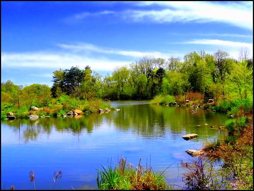 newyork reflection brooklyn spring image prospectpark oneofthebest dmitriyfomenko spring62014