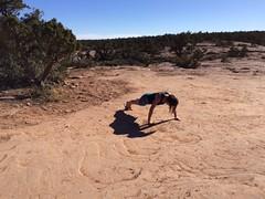 Scenic push-ups. #20pushups