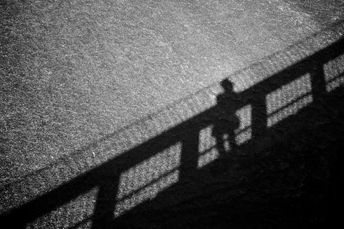 a bridge..