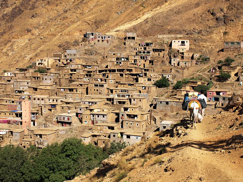 Muleteer, Atlas Mountains, Morocco