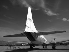Fat assed C-131