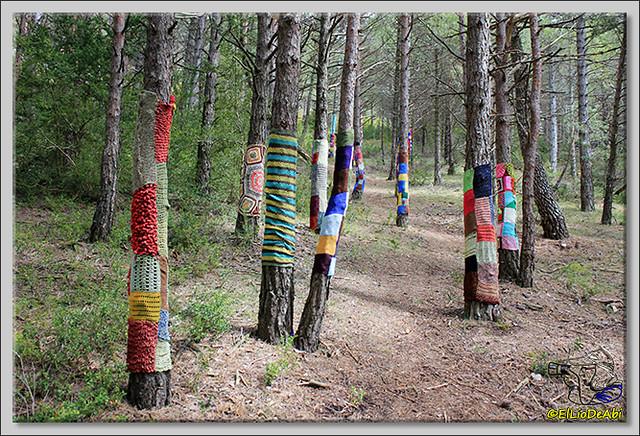 1 Ruta de los Duendes y Bosque encantado