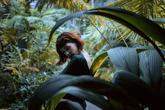 green paradise [35]