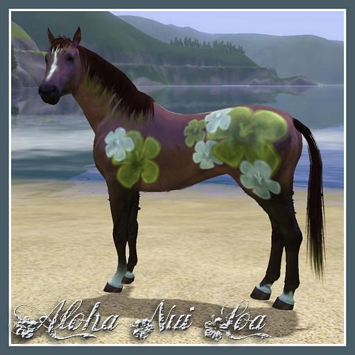 Aloha Nui Loa (All My Love)