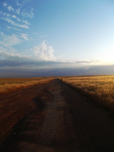 Roads Forever
