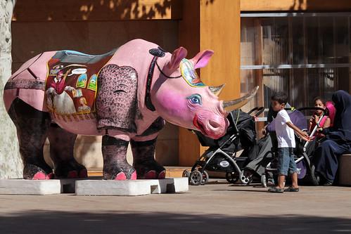 Marseille 080 Rhino