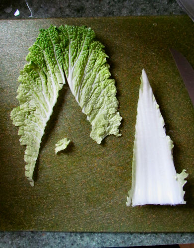Cut out Nappa Cabbage Spine