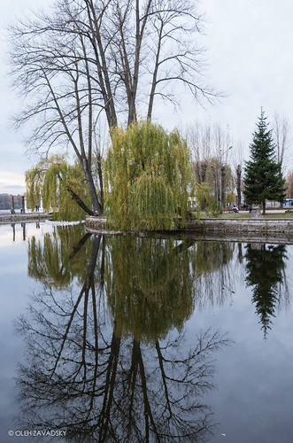leica lake nature natur ukraine x galicia x2 xseries ternopil природа україна озеро galizien tarnopol галичина тернопіль leicaimages leicax2 ternopilskaoblast leicax2gallery