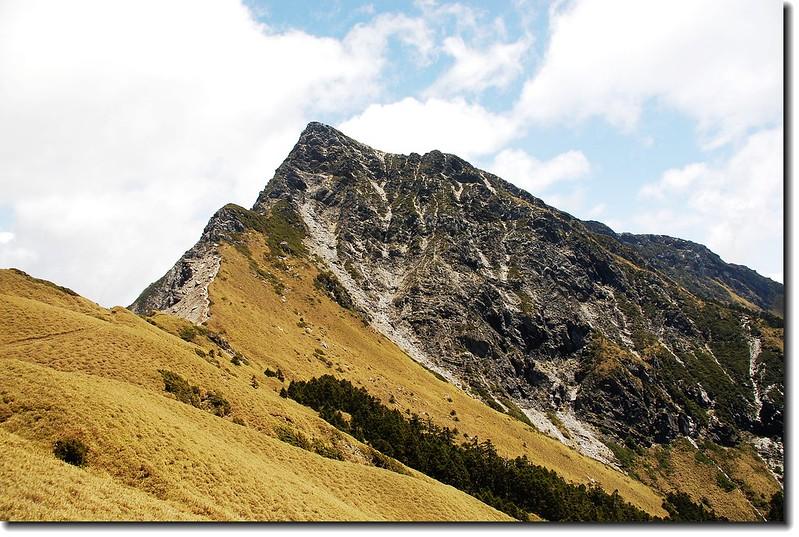 奇萊主山北峰 1