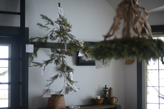The Christmas Tree that Blew Our Minds... & Hearts