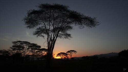 africa sunset landscape nikon paisaje ethiopia arbaminch d800 etiopia acacias etnia 2013 konso abisinia azulada vanesaruiz