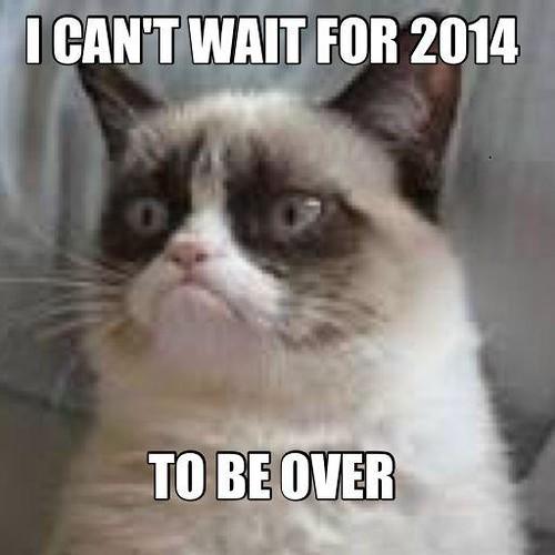 Grumpy Cat hates 2014