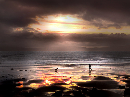 Dug & Man at Seamill Beach by g crawford