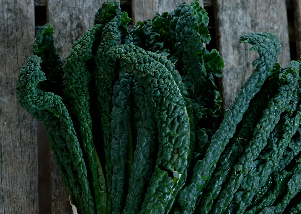 bunch of cavalo nero kale