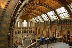 Natural History Museum  09 Feb 2014
