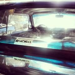 The #Roadkill #Mustang??