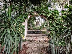 Hacienda Xcanatún - Mérida Yucatán México 120226 230402 6635