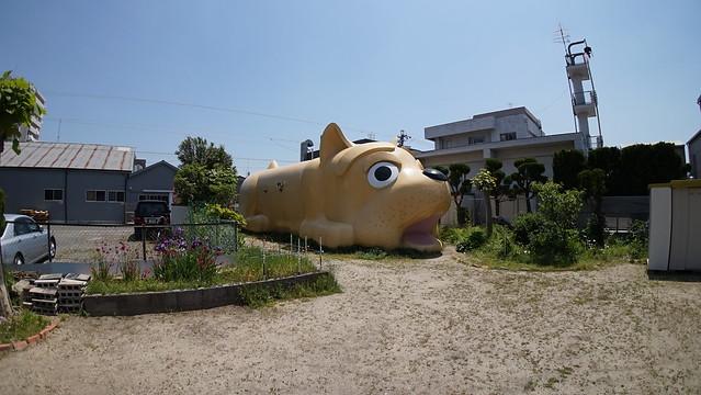 dog_sirakane_3