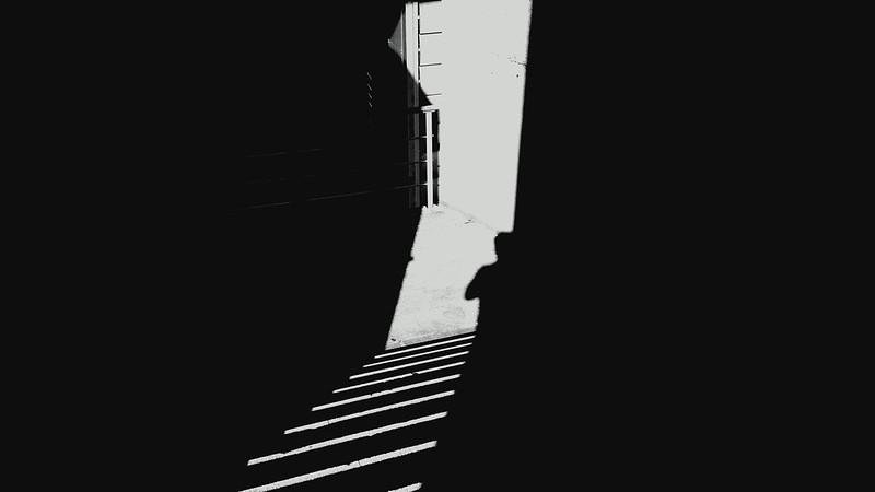 entre las sombras