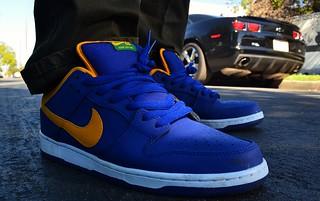 2013 Nike SB Brazil Dunk Lows