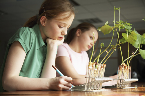 Students learn about agriculture by using materials available online through the Ag in the Classroom's Matrix. (iStock image)