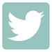 twitter3 copy