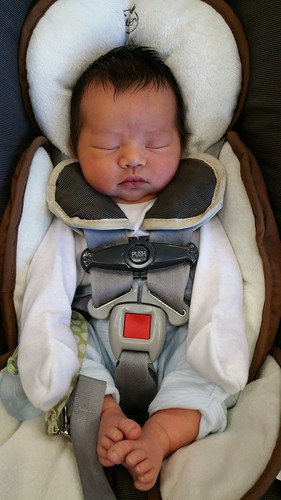 Parker at 1 Week Old | shirley shirley bo birley Blog