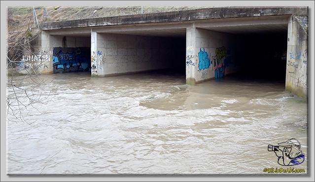 Río Oca a su paso por Briviesca (5)