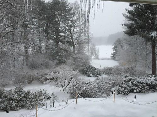 snow view IMG_0131