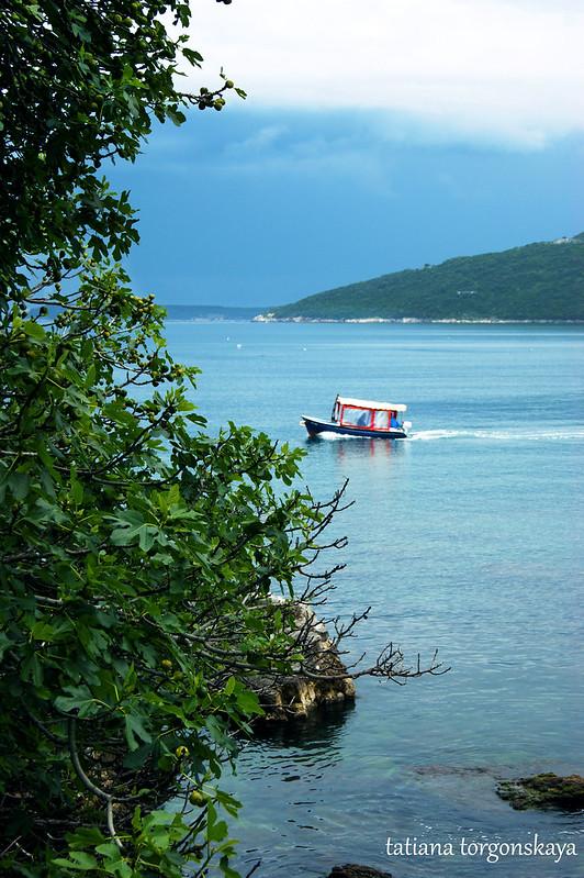 Вид на плывущую лодку