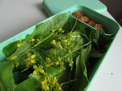 (100% raw) vegan flower salad with marinated &quot…