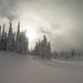 Silverstar Snow by noahtaylor3
