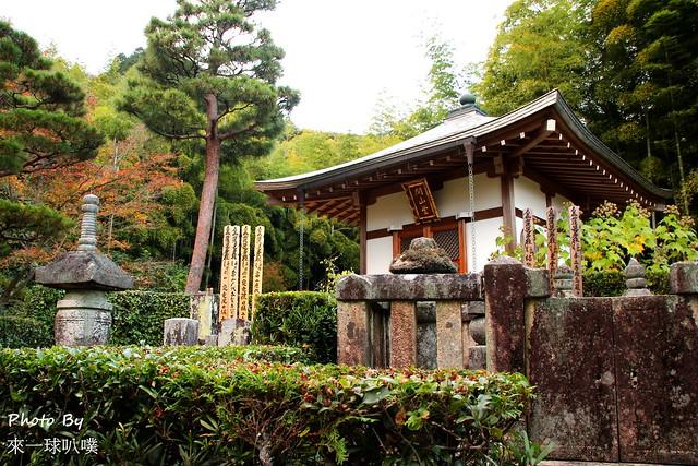 嵐山旅遊景點-常寂光寺47