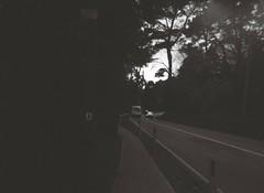 Road, Footpath, Traffic, Guide Posts