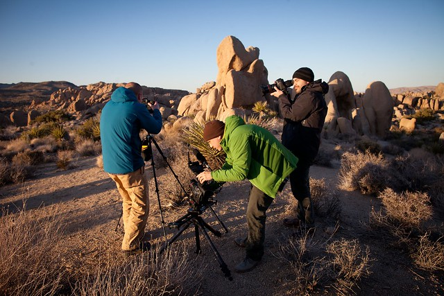 Manfrotto Be Free Tripod ad shoot BTS - Joshua Tree sunset