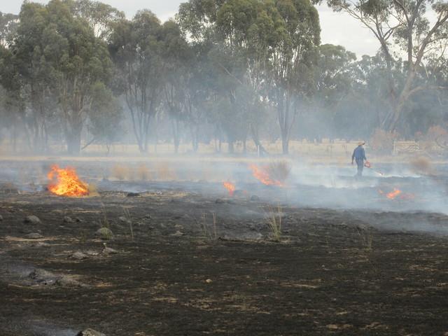 Burning-off at the farm (043)