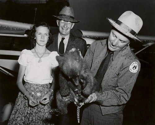 Arriving in Washington, DC, the little hotfoot victim was greeted by a pouring rain, Lyle F. Watts, Chief of the Forest Service (center) and Stanlee Ann Miller of Albuquerque. N.M., who represented the school children of her state. (U.S. Forest Service photo)
