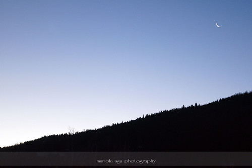 morning trees sky moon nature sunrise dawn colorado hill thegalaxy